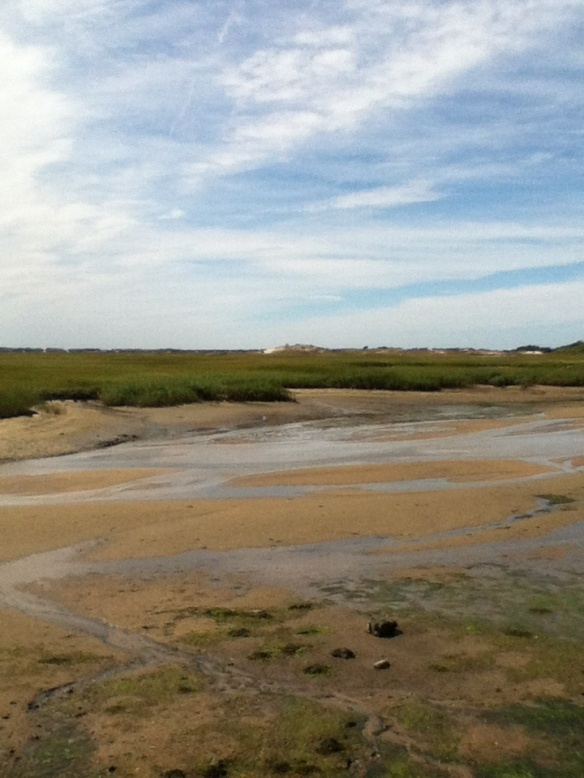 Another view of the West End marshes, Provincetown, at low tide. Love these colors.